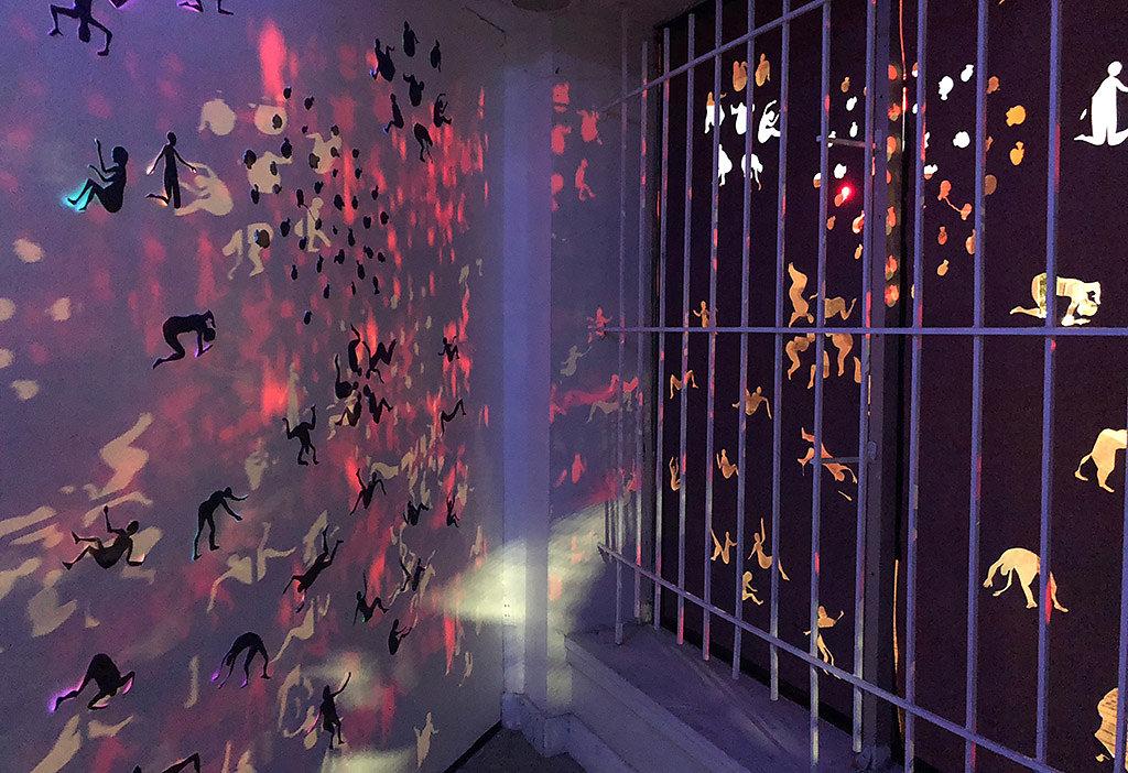 Inside Window Space by night